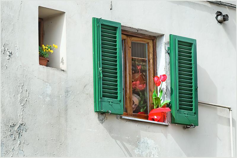 Italia tricolor, muro bianco, finesta con persiane verdi, tulipani rossi