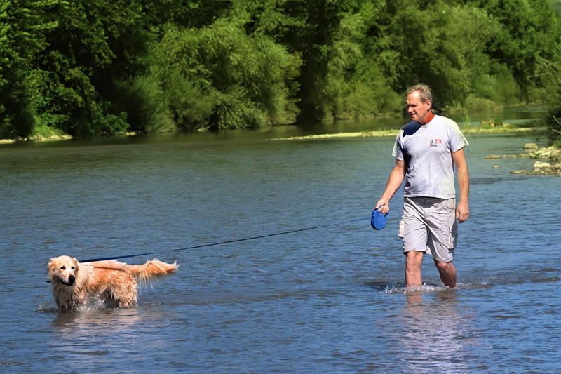 Un cittadino di Figline passeggia il suo cane nel fiume Arno