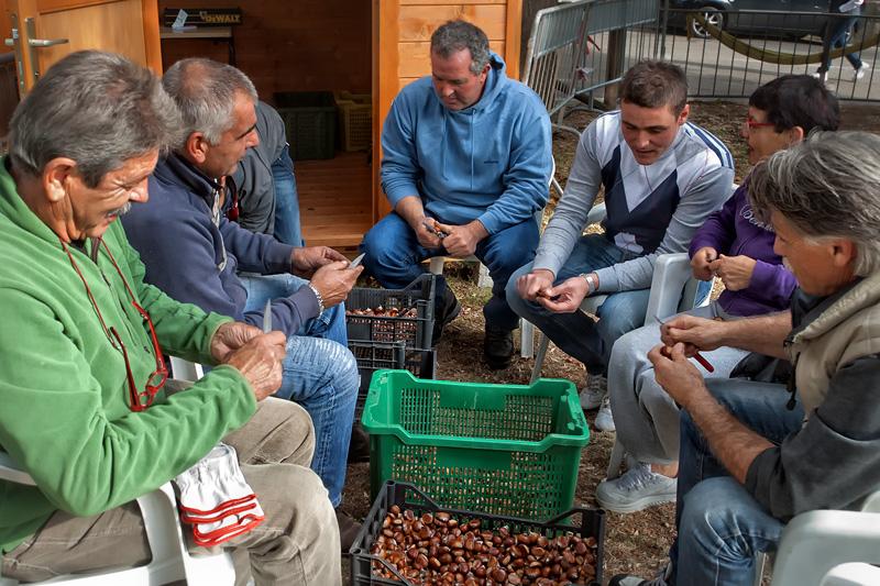 Gli abitanti di Lucolena preparano (castrano) le castagne per la festa